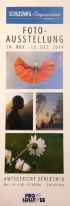 Plakat zur Ausstellung von Fotos von Uwe Lo im Schleswiger Amtsgericht im Lollfuß